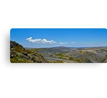 The Bogong High Plains Canvas Print