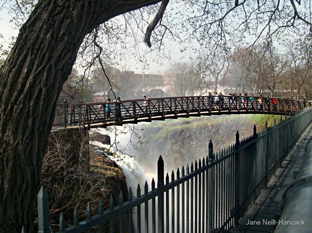 The Foot Bridge Across The Falls by Jane Neill-Hancock