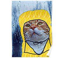 Raincat Poster