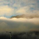 surreal coles bay. the hazards, tasmania by tim buckley | bodhiimages