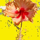 Happy Hibiscus _Yellow by Sally Squirrell