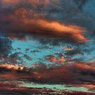 Cloud 20120830-145 by Carolyn  Fletcher