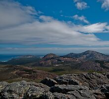 Le Frenchie's Peak by BeccE