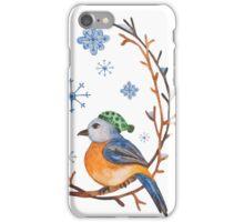 Watercolor Winter Bird iPhone Case/Skin