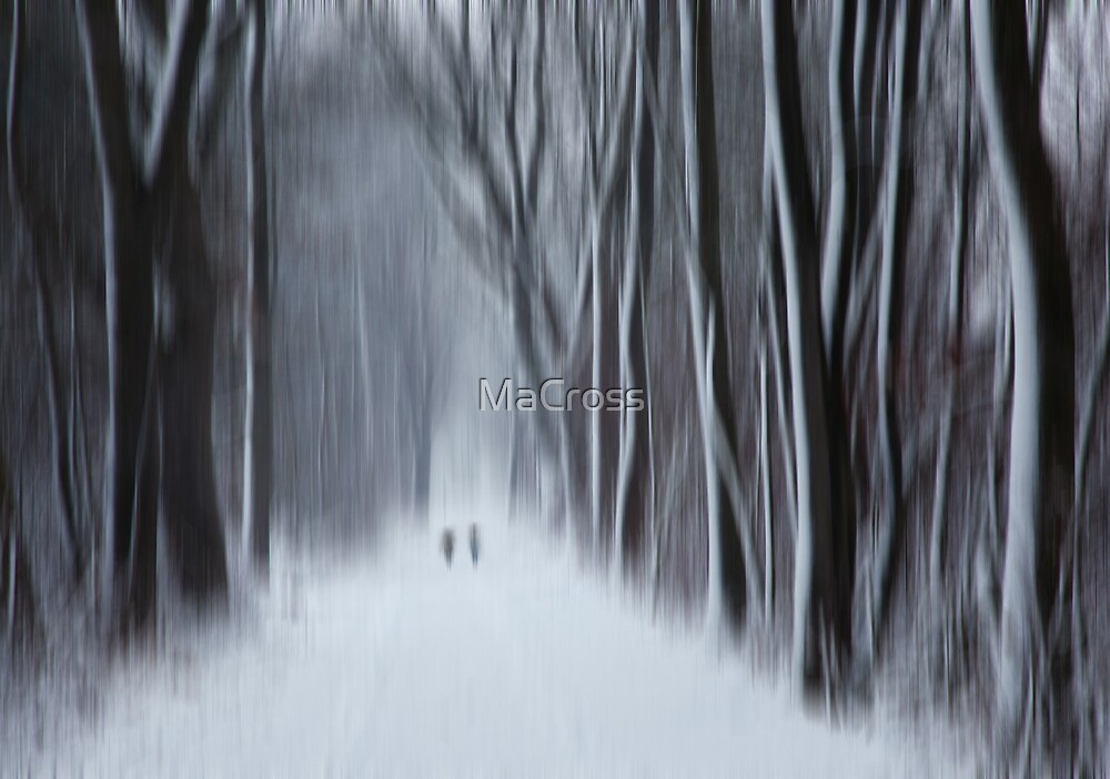 Ghosts of Winter II by Martina Cross