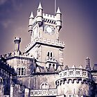 Pena Palace by Soniris