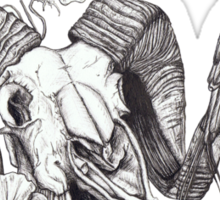 The Ram skull and bird Sticker