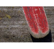 The red oar Photographic Print