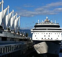 Ships Ahoy! by Brenda Dickie