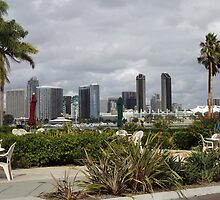 San Diego Cityscape from Coronado Island by seeingred13