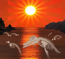 Dolphin Bay Taiji Cove by Eric Kempson
