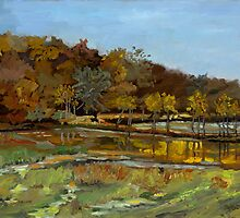 Annapolis Reservoir by Phyllis Dixon