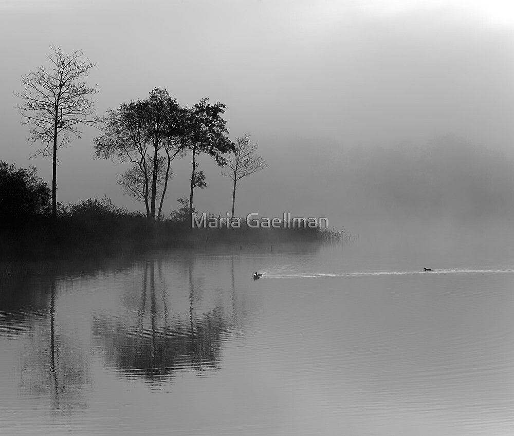 Loch Ard Morning Mist by Maria Gaellman