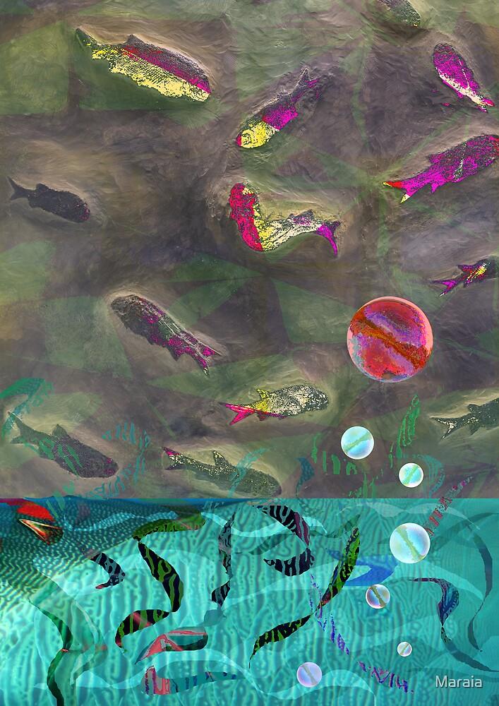 Go Fish by Maraia