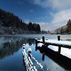 Loch Ard in Winter by Maria Gaellman