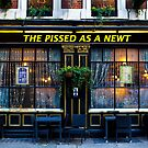 Pissed as a Newt Pub  by DavidHornchurch