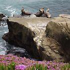 Sunbathers - Flora & Fauna                                                                       by seeingred13