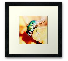 active! Framed Print