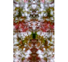 Abstract kaleidoscope figure and faces Photographic Print
