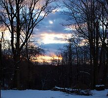 Winter Sunset by Danail Tanev