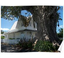 Old Russell.......Bay of Islands, New Zealand.............! Poster