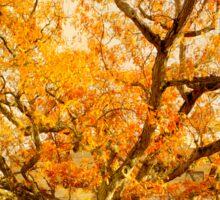 Autumn Oak Sticker