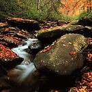 STREAM,AUTUMN by Chuck Wickham