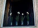Flowers in Window by Lucinda Walter