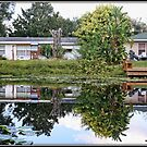 Pond Reflections by Mikell Herrick