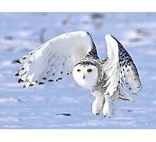 Her power takes flight Photographic Print