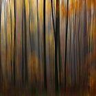Autumn by Martina Cross