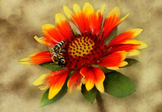 Just bee happy... by Yool