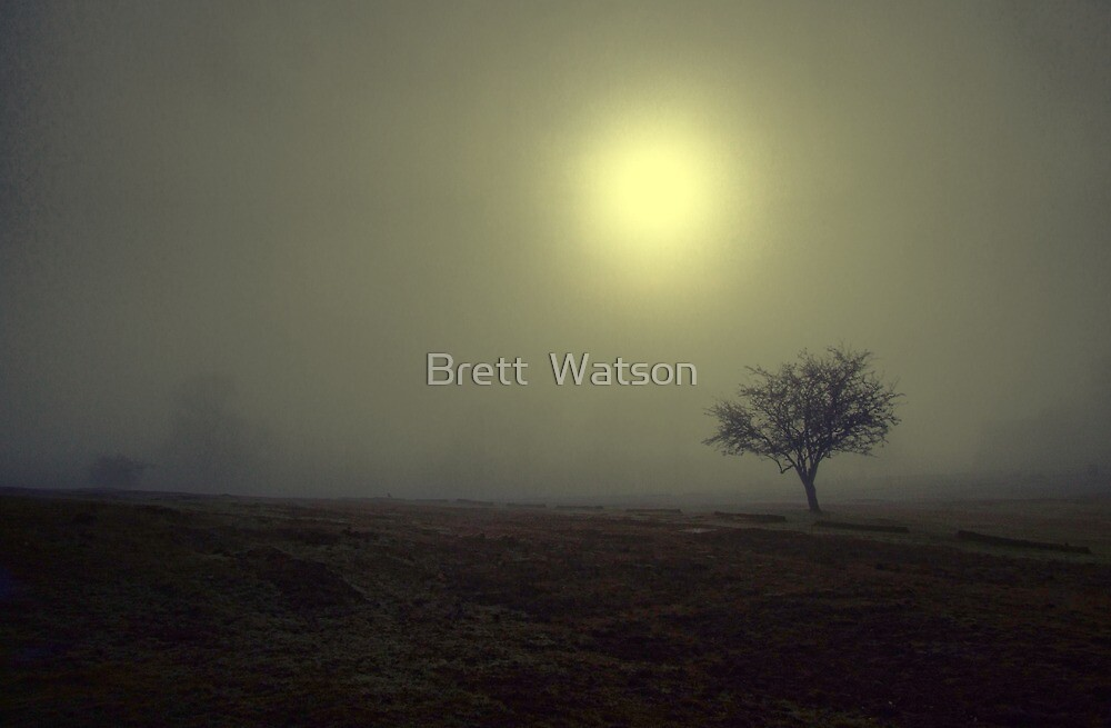 the fog at knole park by Brett Watson Stand By Me  Ethiopia