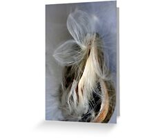 THE SEED X Greeting Card