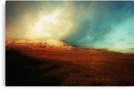SPIRIT IN THE SKY by leonie7