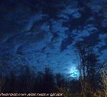 Bark At The Moon by Derteuflische