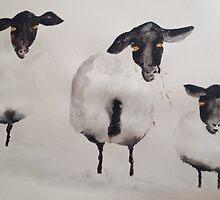 Sssheep by Saffiere Baker