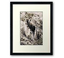 Hollow Tree Stump  VRS2 Framed Print