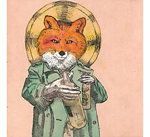 Saint Fox Photographic Print