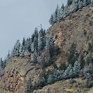 Frosted Mountainside by John  Sperry