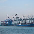Hamburg Container Harbor (Germany) VRS2 by vivendulies