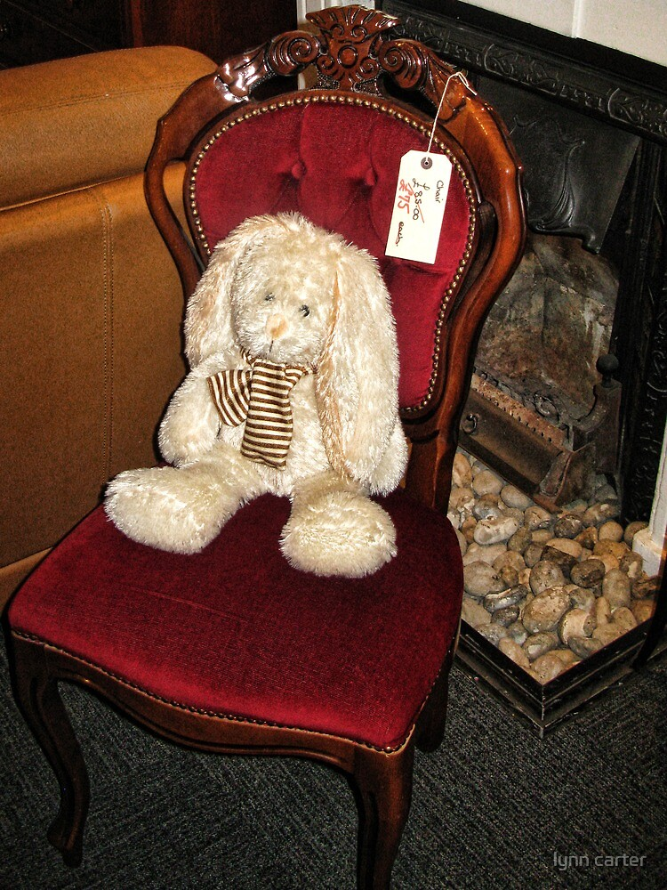 Bunny Not Included by lynn carter
