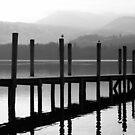 Derwent Water Jetty. by Lou Wilson