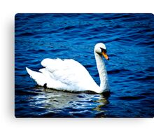 White Swan  VRS2 Canvas Print