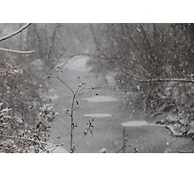 Winter Snow Storm I Photographic Print