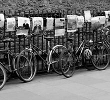Cambridge Bikes by Rachel Down