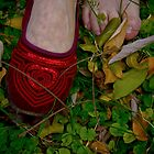 Zapatito rojo (little red shoe) by Veroniquecz