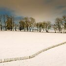 Snowy field by JEZ22
