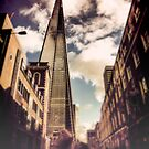 The Shard by Sharonroseart