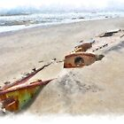 Buried Treasure - Shipwreck on the Outer Banks II by Dan Carmichael